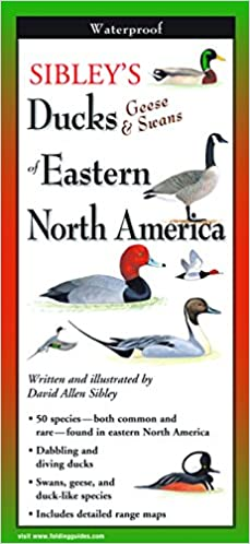 Map Of America Looks Like A Duck.Sibley S Ducks Geese And Swans Of Eastern North America