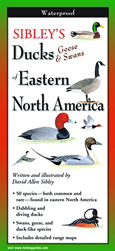 Sibley's Ducks, Geese, and Swans of Eastern North America (Foldingguides)