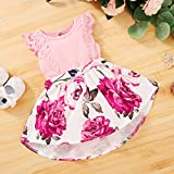 Newborn Infant Baby Girls Floral Dress Flutter Lace