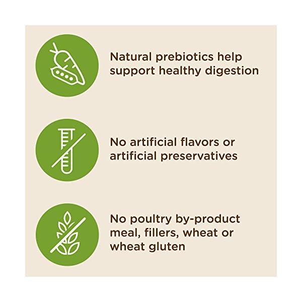 Rachael Ray Nutrish Super Premium Dry Dog Food, Chicken & Veggies Recipe