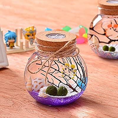 Office Desktop Small Glass Goldfish Bowl Micro Landscape Mini Landscaping Betta Ecological Bottle Creative Gift