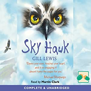 Sky Hawk Audiobook