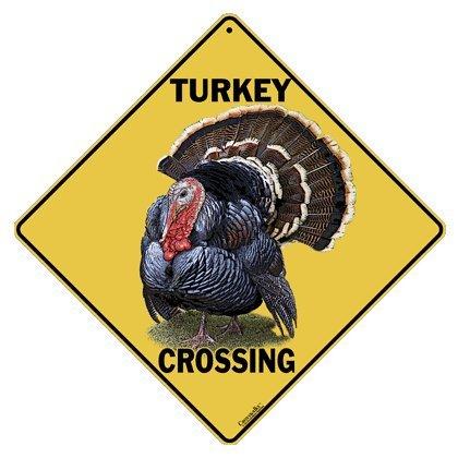 Turkey Crossing 12
