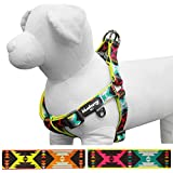 "Blueberry Pet Summer Step-in Harnesses 5/8"" Small Extravagant Green Vintage Tribal Pattern No Pull Ultra-soft Neoprene Padded Dog Harness, Matching Collar & Leash Available Separately"