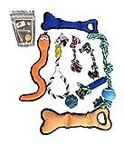 Dog Pet Treasure Bundle (Rope Dog Toys, Tough Dog Toys and Dog Treats)
