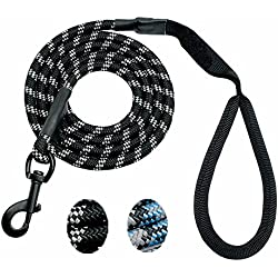 fairy C 6 FT Super Strong Dog Training Leash, Comfortable Handle and Reflective Leash for Large and Medium Dogs (Black)
