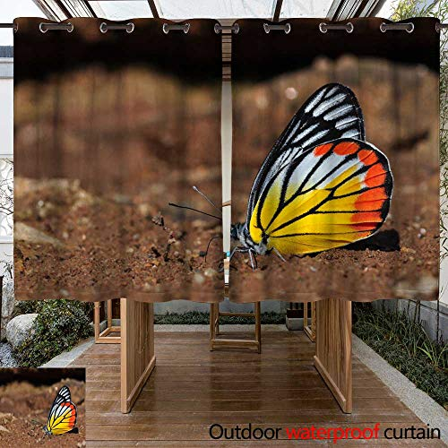 - WinfreyDecor Outdoor Curtains for Patio Sheer Painted Jezebel Butterfly W96 x L72