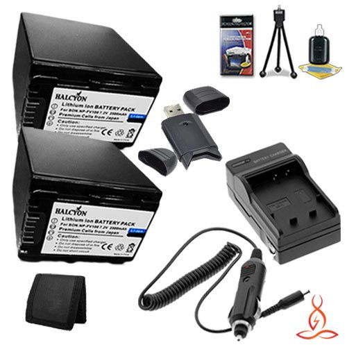 Two Halcyon 2500 mAH Lithium Ion Replacement NP-FV100 Battery and Charger Kit + Memory Card Wallet + SDHC Card USB Reader + Deluxe Starter Kit for Sony 16GB HDR-CX380 HD Handycam Camcorder and Sony NP-FV100 by Halcyon