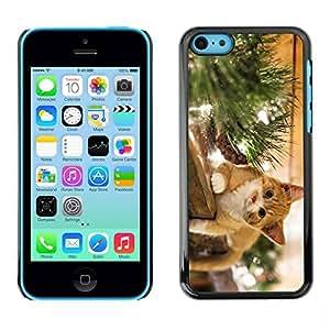Paccase / SLIM PC / Aliminium Casa Carcasa Funda Case Cover para - The Happy Cat - Apple Iphone 5C