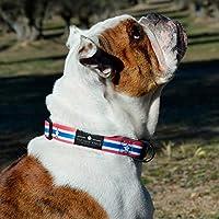 THE PAW STATE | Collar para Perro Ajustable CAPI Dog | Tallas S, M, L Disponibles | Suave y Resistente | Collar de Perro Diseñado en España | Donamos el 5% a