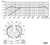 AKG Pro Audio P220 Vocal Condenser