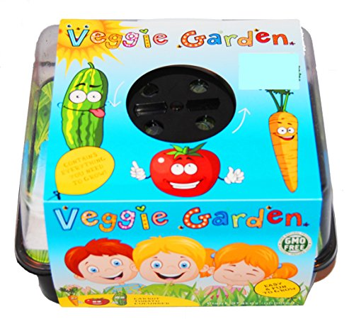 Kids Veggie Garden Starter Kit