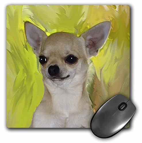 Price comparison product image 3dRose LLC 8 x 8 x 0.25 Inches Mouse Pad, Chihuahua Portrait (mp_4465_1)