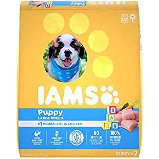 IAMS PROACTIVE HEALTH Smart Puppy Large Breed Dry Puppy Food with Real Chicken, 30.6 lb. Bag