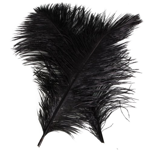 10pcs Ostrich Feathers 12-14inch(30-35cm) for Home Wedding Decoration(White) (Black)