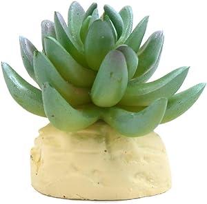 uxcell Green Plastic Cactus Plant Terrarium Reptile Tank Habitat Decor for Reptiles