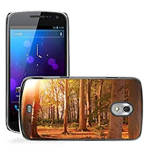 Hot Style Cell Phone PC Hard Case Cover // M00307102 Forest Trees Nature Landscape Sunset // Samsung Galaxy Nexus GT-i9250 i9250