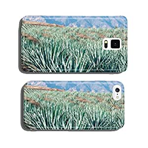 Agave fields in Tequila, Jalisco (Mexico) cell phone cover case iPhone6 Plus