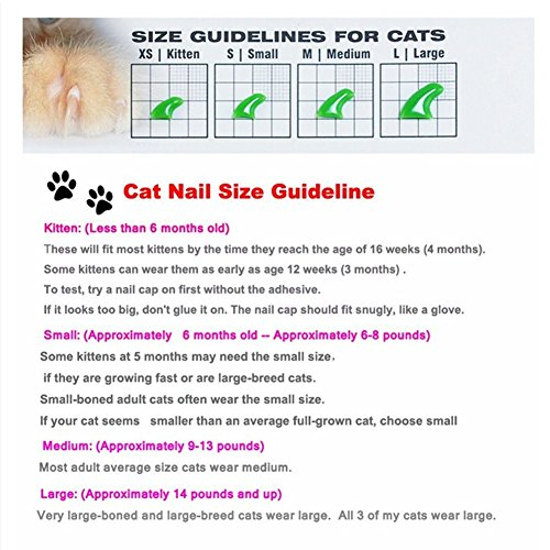 Image of Ninery Ave 100Pcs Cat Nail Caps Pet Soft Claws Control Paws of 5 Different Shinning Crystal Colors and 5Pcs Adhesive Glue 5pcs Applicator with Instructions Support (L)