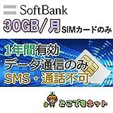 ソフトバンク プリペイド データ 通信 SIM カード 1年間 毎月30GB 4G 高速 (30GB/月(一年間有効))