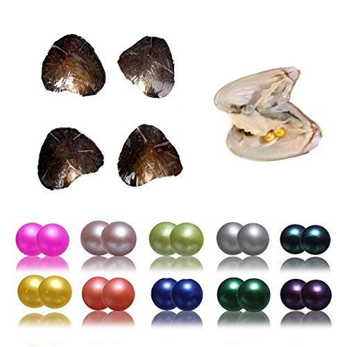 10PC Oysters with Twin Wish Pearls Inside Love Freshwater Cultured Round Oyster 10 Different Colors Total 20 Pearls (7-8mm) ()