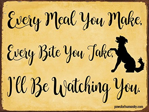 Bird Dog Sign (Funny Dog Signs ~ Every Meal You Make, Every Bite You Take, I'll Be Watching You ~ Metal 9x12 inches ~ USA Made ~ Dog Lover, Walker, Sitter, Veterinarian, Groomer, House, Decor & Gifts)