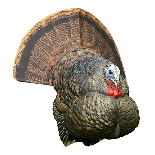 Avian-X Strutter Turkey Decoy