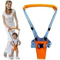 wergem Caminante de aprendizaje para niños pequeños adecuado para bebés de 0 a 2 años de edad Arneses de seguridad