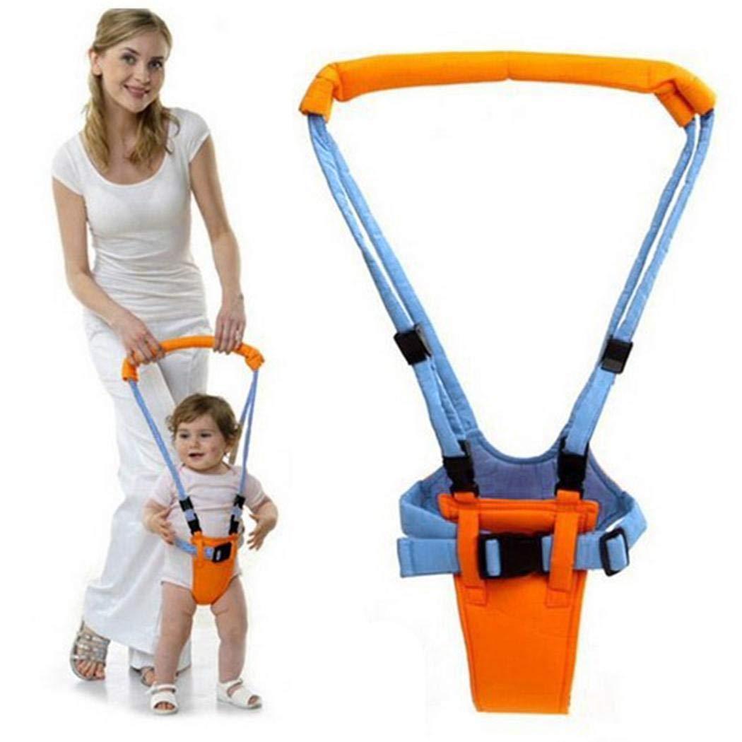 cioler Caminante de aprendizaje para niños pequeños adecuado para bebés de 0 a 2 años de edad Arneses de seguridad