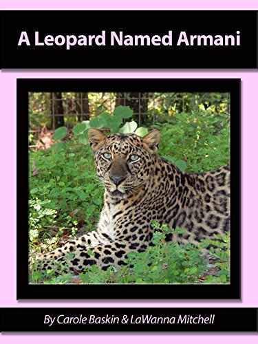 Armani Cat - A Leopard Named Armani (Meet The Cats Book 2)