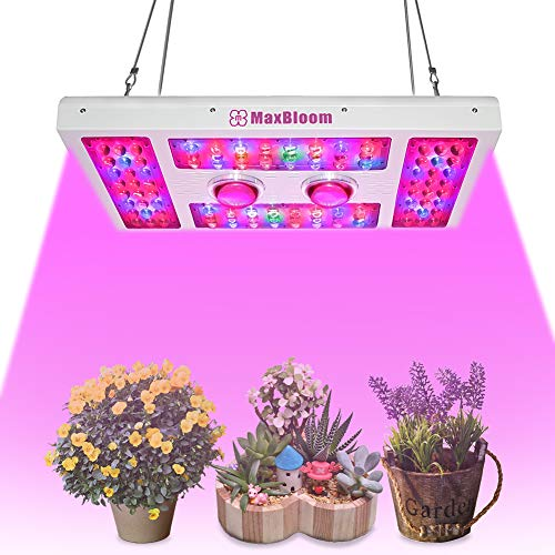 600W Dimmable LED Plant Grow Light,12-Band Full Spectrum COB Led Grow Lights with Dimmable Veg/Bloom Channels for Indoor Plants Veg and Flower