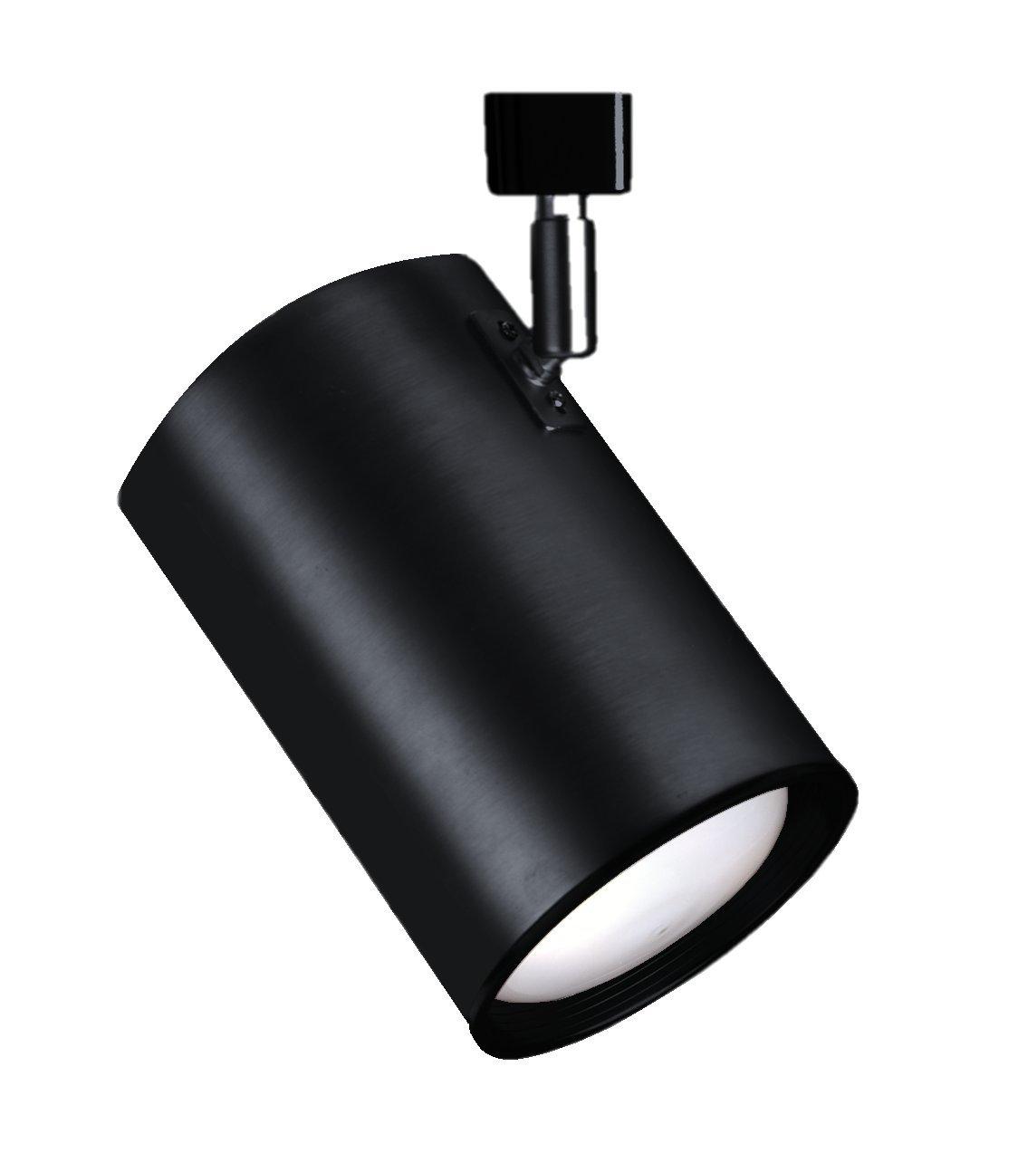 NICOR Lighting 75-Watt Flat Back Cylinder Adjustable Directional Track Light Head, Black (10315BK)