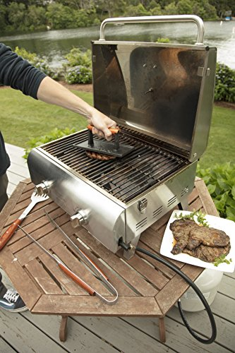 Cuisinart CGPR-221 Cast Iron Grill Press - smallkitchenideas.us