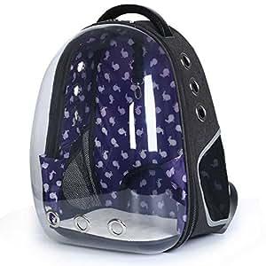 CHANG Mochila plegable para gatos y mascotas, portátil, transparente, bolso de viaje para perro, mochila pequeña para gato, color rojo: Amazon.es: Deportes ...
