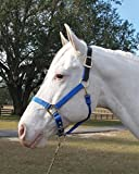 ADJUSTABLE HORSE HALTER WITH LEATHER HEADPOLE - SMALL - BLUE