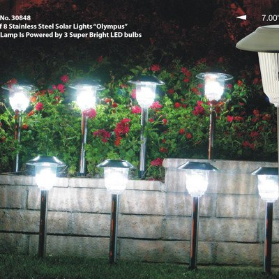 Homebrite Solar Lights