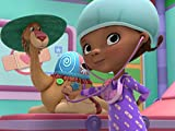 Toy Hospital: Camille Gets Over The Hump / Willow's Wonky Whiskers