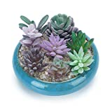 7.3 inch Vintage Round Ceramic Planter Pots Blue Glazed Succulent Holder Bonsai Flower Vase Garden Decorative Cactus Plants Stand Artificial Topiary Potted Container