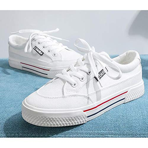 piatto Scarpe Canvas da Sneakers donna Bianco Black Estate Comfort Primavera Nero Tacco ZHZNVX IxzqdI