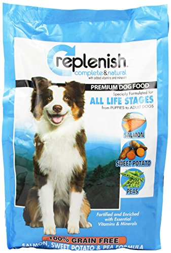 Replenish Grain Free Dry Dog Food, Salmon Recipe, 5-Pound Bag