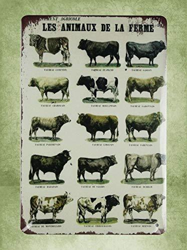 QDTrade Metal Sign 16 x 12inch - Farm House Art Les animaux de la Ferme Farm Animals tin Sign