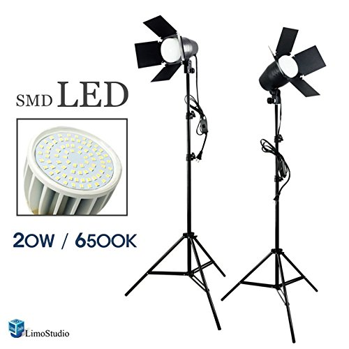 LimoStudio LED Day Light Bulb 2 pcs x Continuous Barndoor Light Stand Kit for Photography Photo Studio