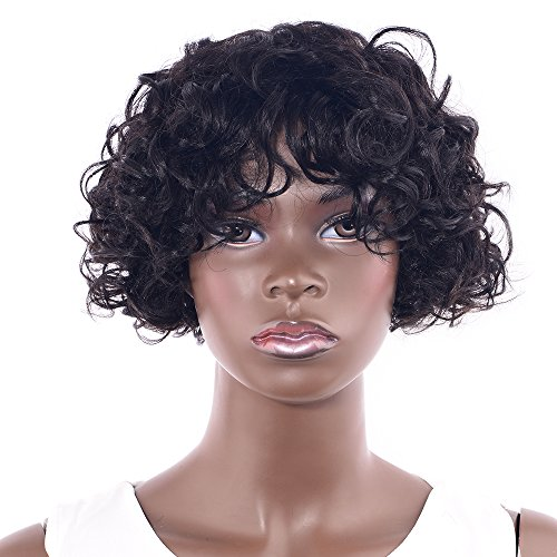 Search : LADYSTAR Unprocessed Human Hair Afro Curly Hair Wigs for Black Women Short Curly Human Hair Wig for African American