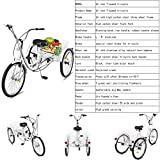 Adult Tricycle Bike, 7 Speed 3-Wheel Bikes for