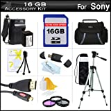 16GB Accessory Kit For Sony HDR-CX430V, HDR-PJ430V HD Camcorder Includes 16GB High Speed SD Memory Card + Replacement (2300Mah) NP-FV70 Battery + Ac/Dc Charger + Deluxe Case + Tripod + 3PC Filter Kit (UV-CPL-FLD) + Micro HDMI Cable + USB 2.0 SD Reader ++