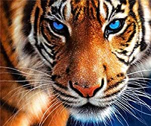 Diamond Painting Kit, 5D DIY Full Drill Embroidery Painting Wall Sticker for Wall Decor - Tiger 12 x 14inch
