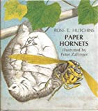img - for Paper hornets book / textbook / text book