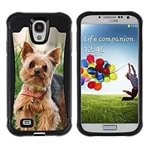 iDesign Rugged Armor Slim Protection Case Cover - Cute Happy Yorkie Terrier - Samsung Galaxy S4