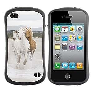 Suave TPU GEL Carcasa Funda Silicona Blando Estuche Caso de protección (para) Apple Iphone 4 / 4S / CECELL Phone case / / Beautiful Wild Horses /