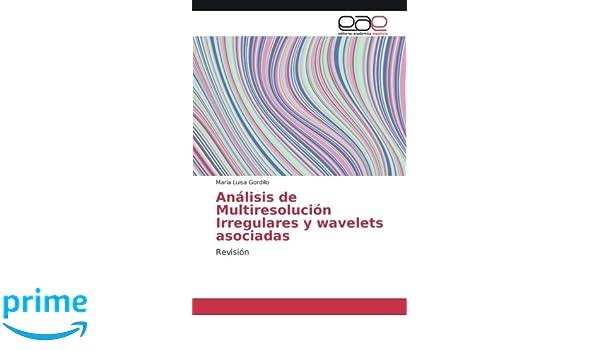 Análisis de Multiresolución Irregulares y wavelets asociadas: Revisión (Spanish Edition): María Luisa Gordillo: 9786202243926: Amazon.com: Books